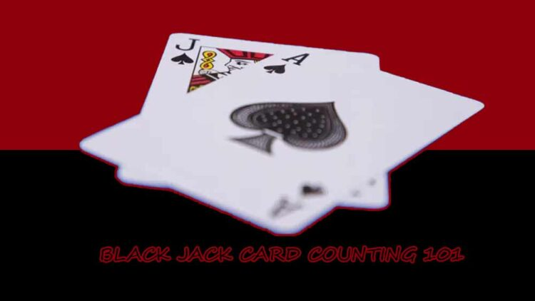 Black Jack Card Counting 101